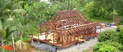 Indonesia Tropical timber